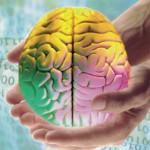 Программа для создания ментальных карт iMindMap