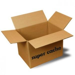 super cache