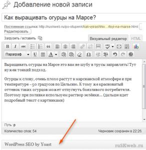 используем Yoast wordpress seo